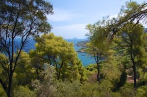 En typisk udsigt på Skopelos