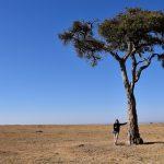 Alene på savannen :-)
